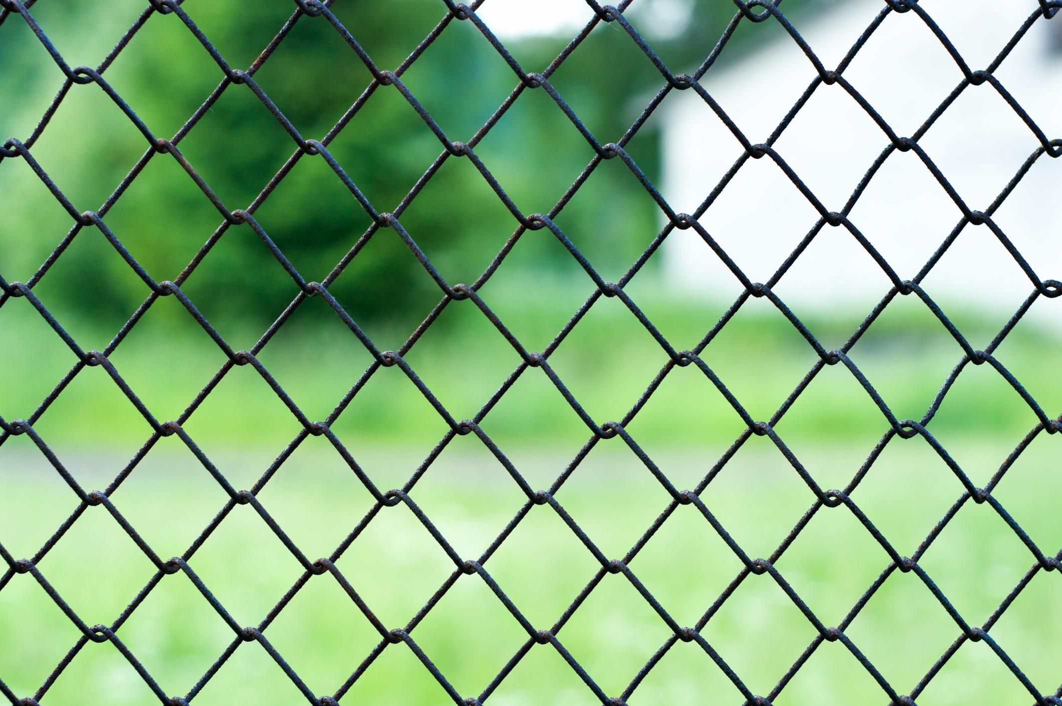 סוגי רשת לגדר